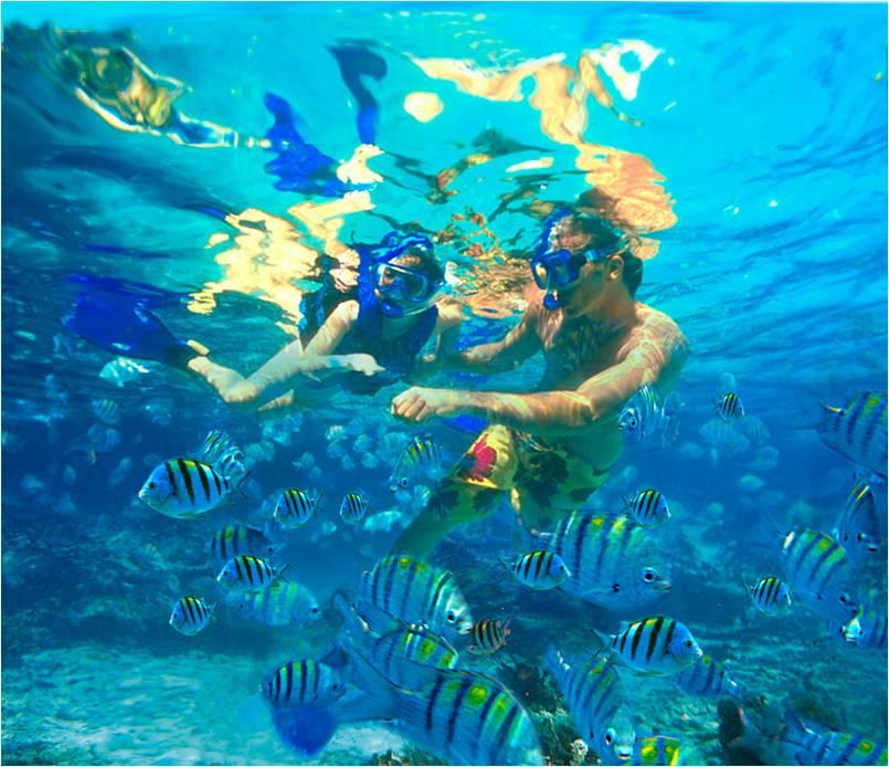Яркий подводный мир в Шельхе. Разнообразие рыб впечатляет.