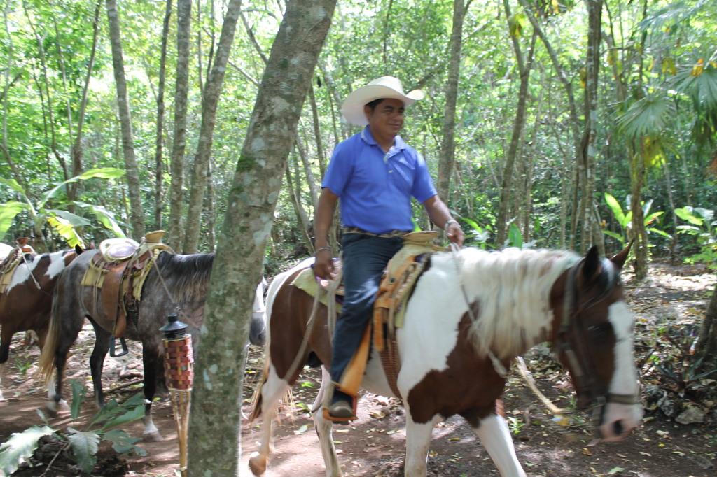 Прогулка на лошадях по джунглям