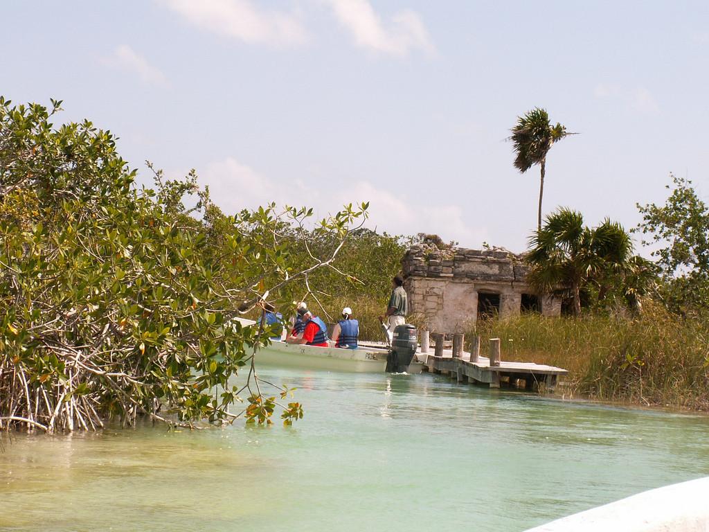 Прогулка по мангровым джунглям
