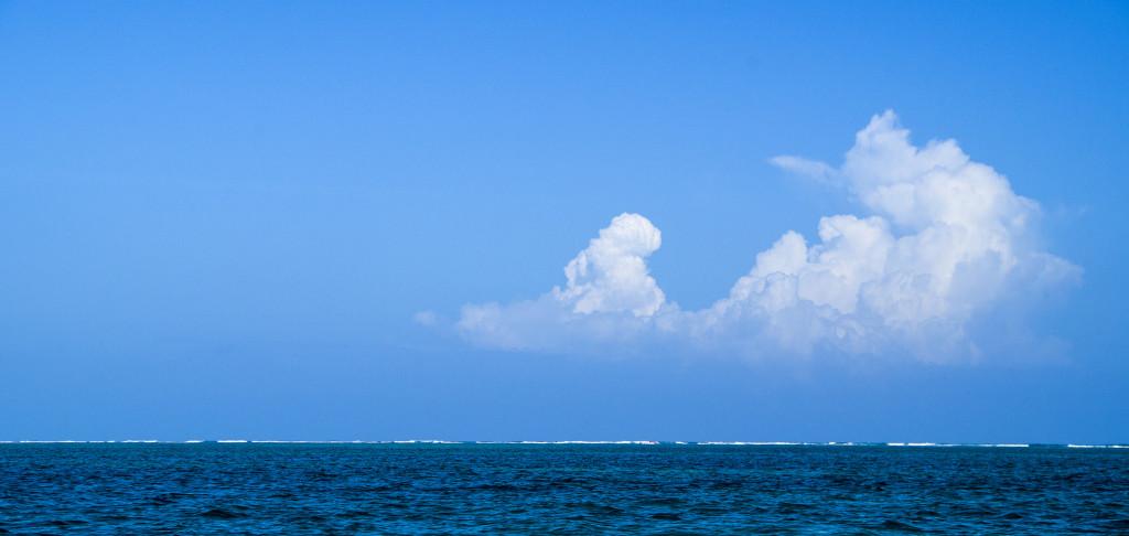 Барьерный риф. Месоамериканский риф.