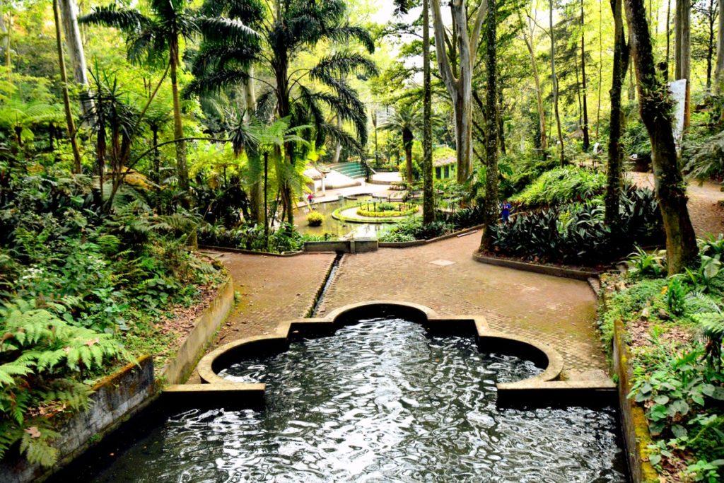 Ботанический парк города Халапы, штат Веракрус, Мексика