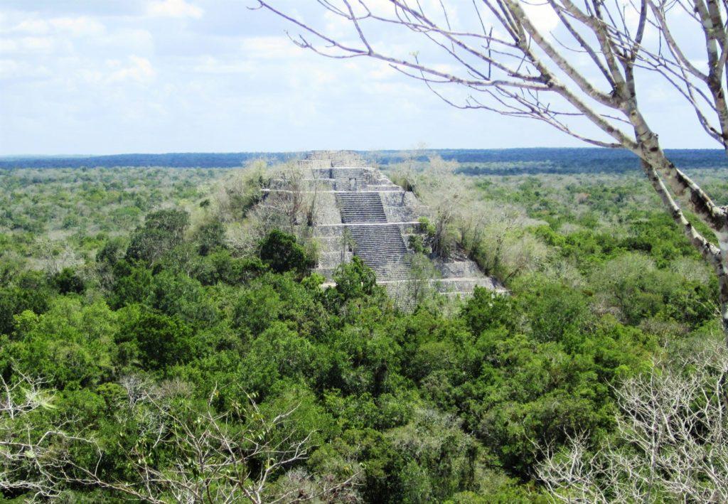 Вид на пирамиду Калакмуль сверху