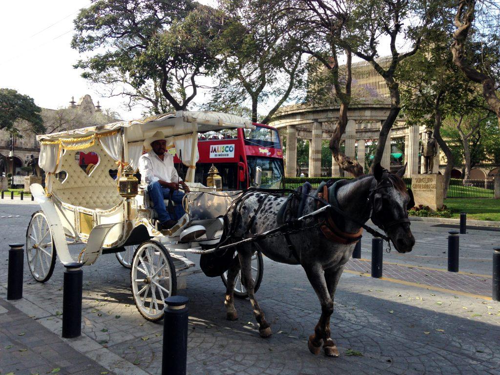 Конная прогулка в карете по историческому центру Гвадалахары