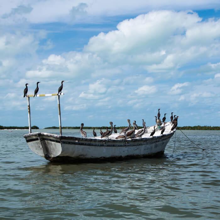 boat rio larartos