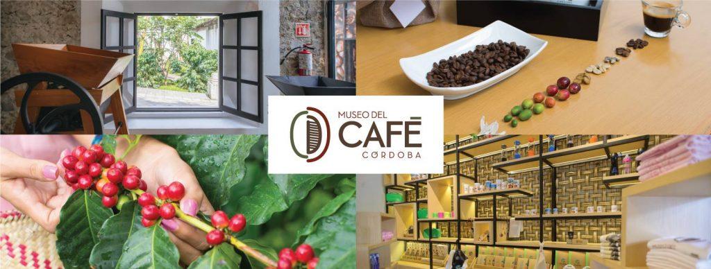 Город окружают 33 плантации, дающие 11 сортов кофе.